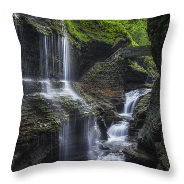 Crown Jewel Throw Pillow by Bill Wakeley