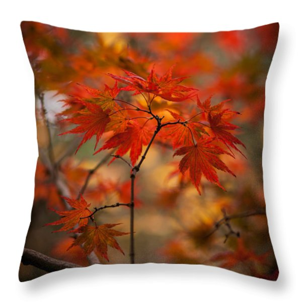 Crown of Fire Throw Pillow by Mike Reid