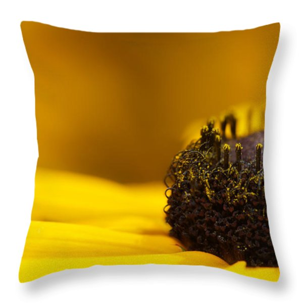 Crowning Sunshine Throw Pillow by Lisa Knechtel