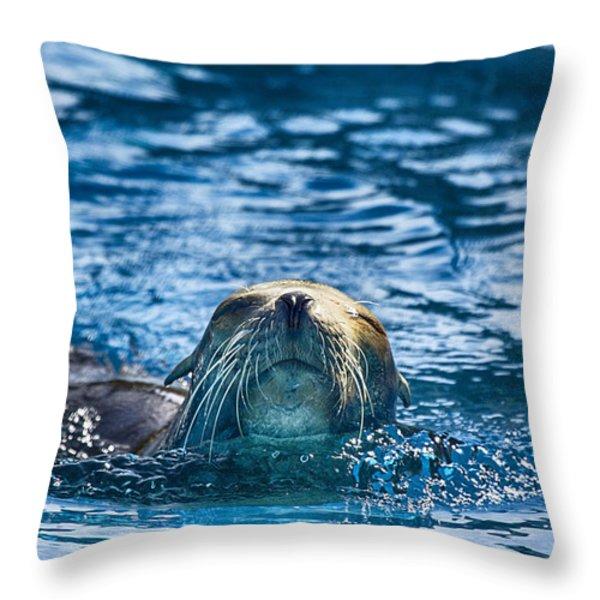 Cruisin Throw Pillow by Douglas Barnard
