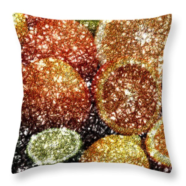 Crystal Grapefruit Throw Pillow by Yael VanGruber