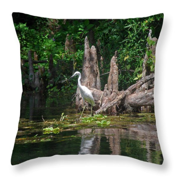 CRYSTAL RIVER EGRET Throw Pillow by Skip Willits