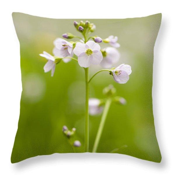 Cuckooflower Throw Pillow by Anne Gilbert