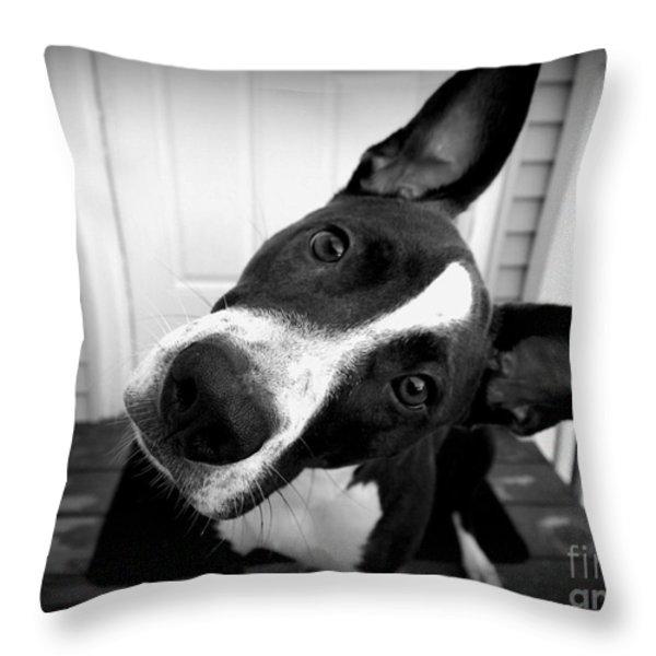 Curious Abby Throw Pillow by Deborah Fay