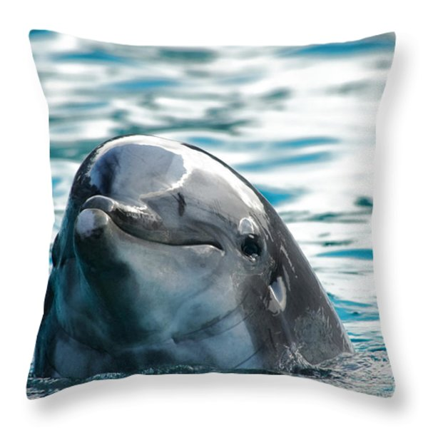 Curious Dolphin Throw Pillow by Mariola Bitner