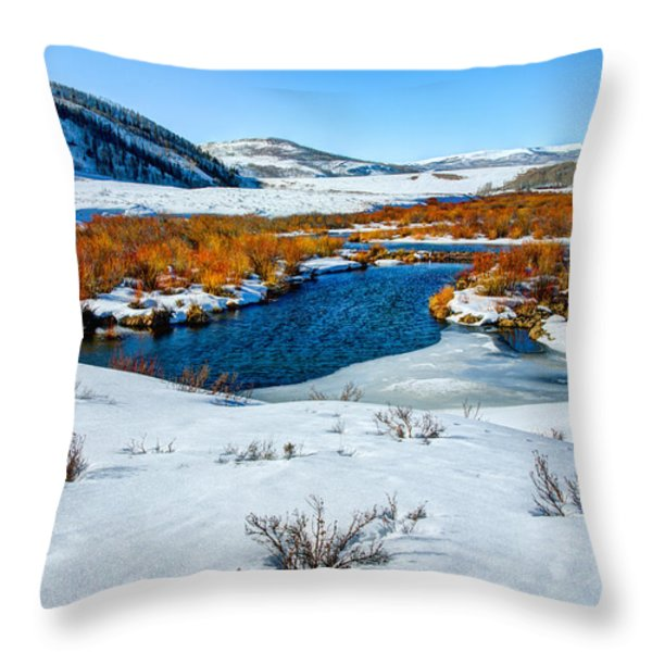 Currant Creek on Ice Throw Pillow by Chad Dutson