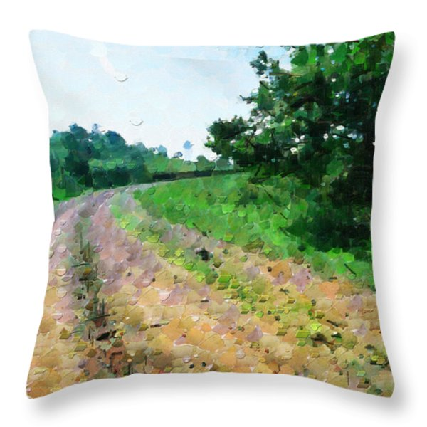 Curved Road Painting Throw Pillow by George Fedin and Magomed Magomedagaev
