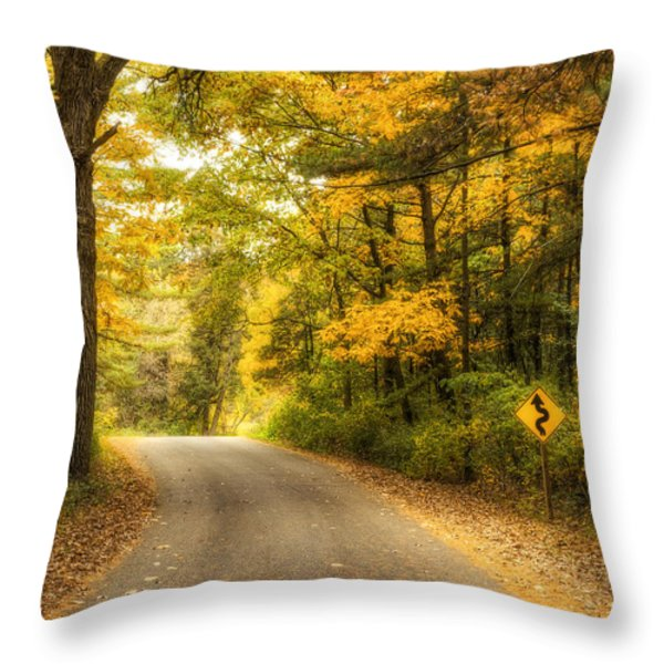 Curves Ahead Throw Pillow by Scott Norris