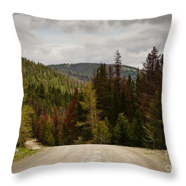 Curviing Dirt Road Throw Pillow by Sue Smith