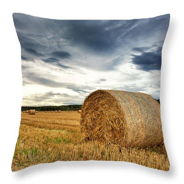 Cut field Throw Pillow by Jane Rix