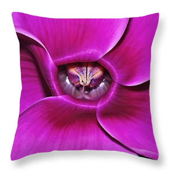 Cyclamen Beauty Throw Pillow by Kaye Menner