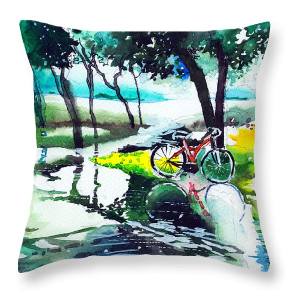 Cycle In The Puddle Throw Pillow by Anil Nene