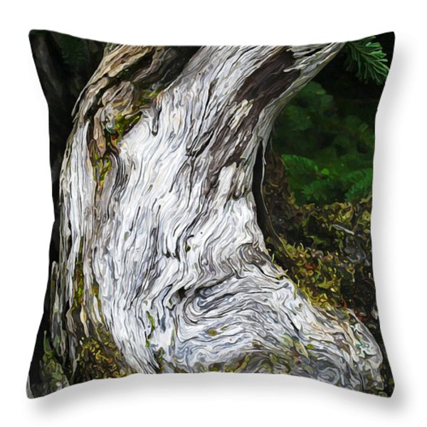 Cycle of Life Throw Pillow by Bill Caldwell -        ABeautifulSky Photography