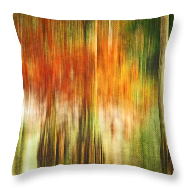 Cypress Pond Throw Pillow by Scott Pellegrin