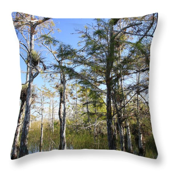 Cypress Swamp Throw Pillow by Rudy Umans