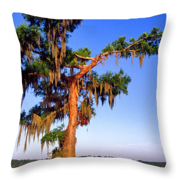Cypress Tree Draped In Spanish Moss Throw Pillow by Thomas R Fletcher