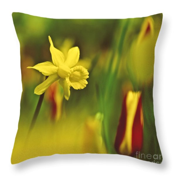 Daffodil Throw Pillow by Heiko Koehrer-Wagner