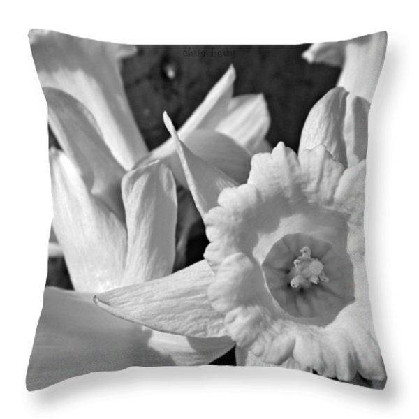 Daffodil Monochrome Study Throw Pillow by Chris Berry