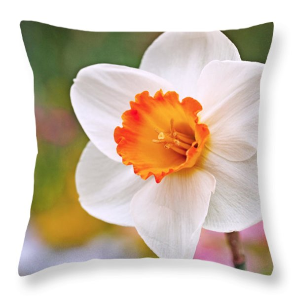 Daffodil  Throw Pillow by Rona Black