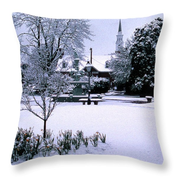 DAFFODIL SNOW Throw Pillow by Skip Willits
