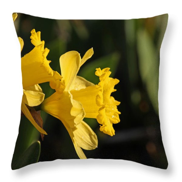 Daffodils Throw Pillow by Jim Nelson