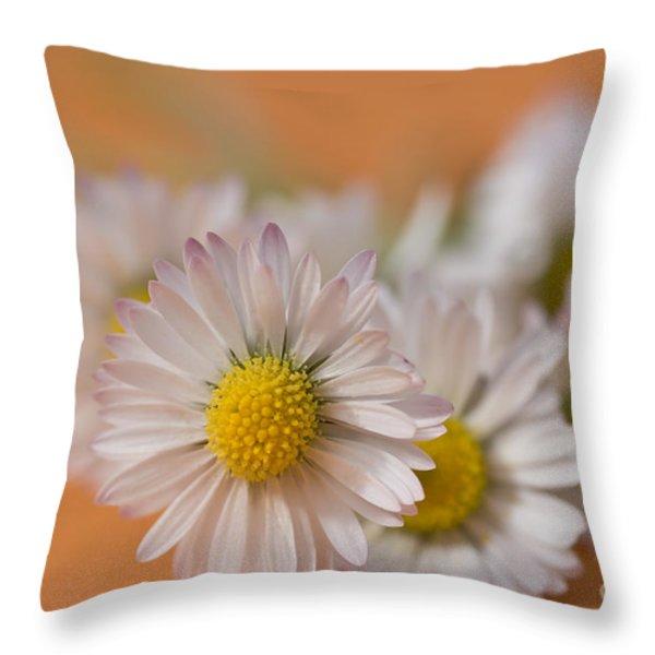 Daisies On Orange Throw Pillow by Jan Bickerton