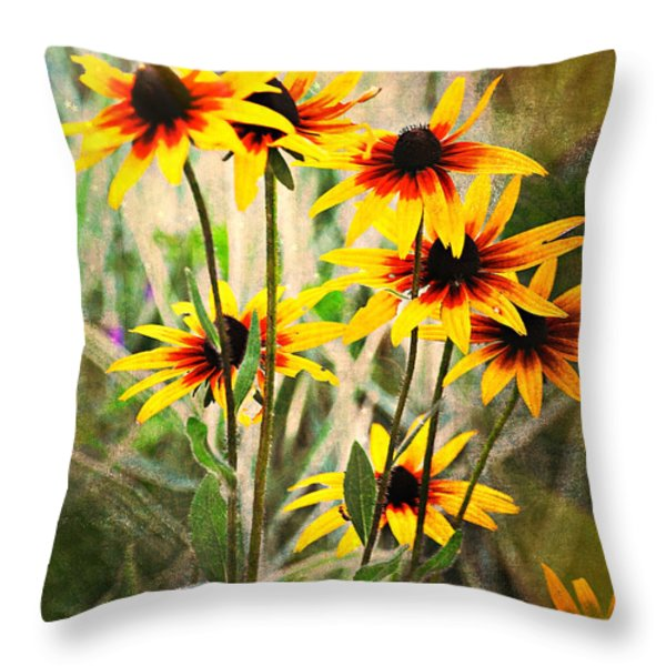 Daisy Do Throw Pillow by Marty Koch