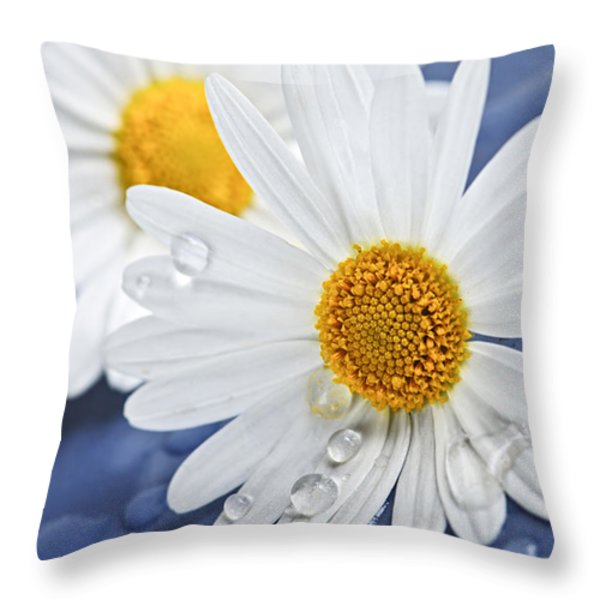 Daisy Flowers With Water Drops Throw Pillow by Elena Elisseeva
