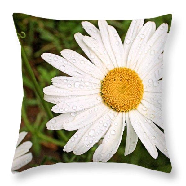 Daisy Freshness Throw Pillow by Kristin Elmquist