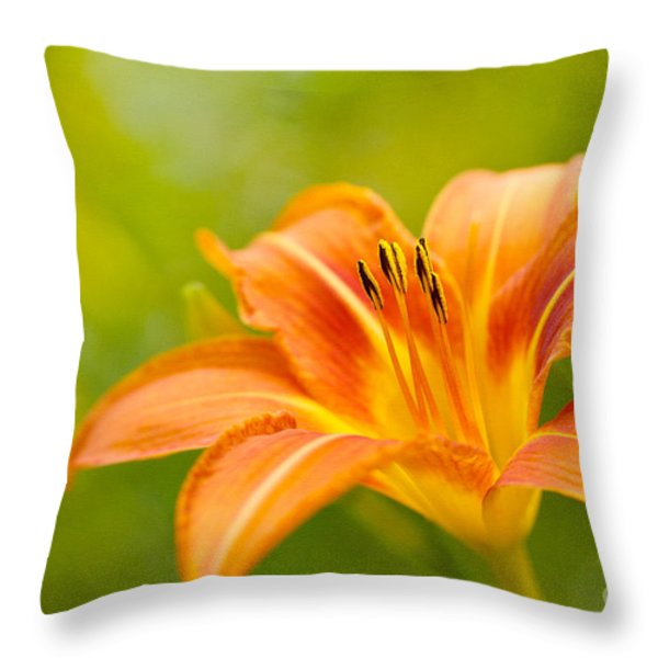 Da'lightful Throw Pillow by Reflective Moment Photography And Digital Art Images