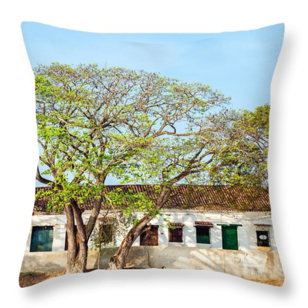 Damaged Colonial Buildings Throw Pillow by Jess Kraft