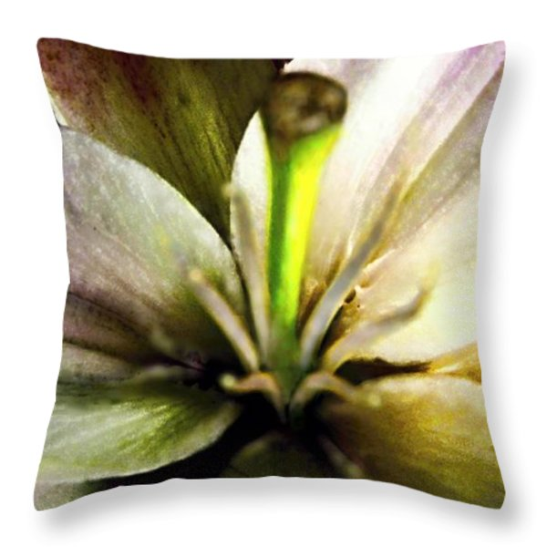Damaged Lily  Throw Pillow by Danielle  Parent
