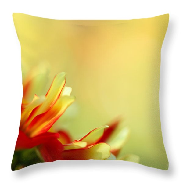 Dancing In The Sunlight Throw Pillow by Reflective Moment Photography And Digital Art Images