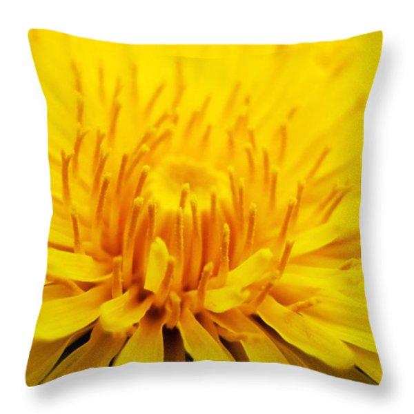 Dandelion Throw Pillow by Christina Rollo