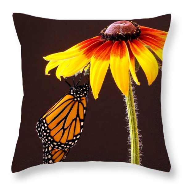 Dangling Monarch Throw Pillow by Jean Noren