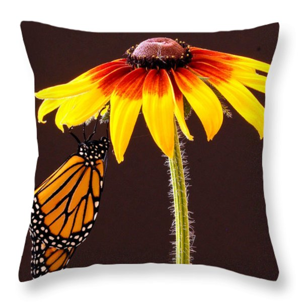 Dangling Monarch Throw Pillow by Jean Noren