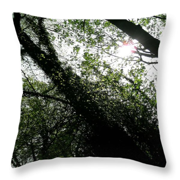 Dappled Forest Throw Pillow by Patrick J Murphy