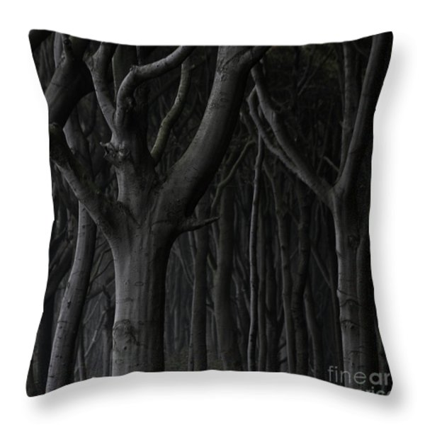 Dark Forest Throw Pillow by Heiko Koehrer-Wagner