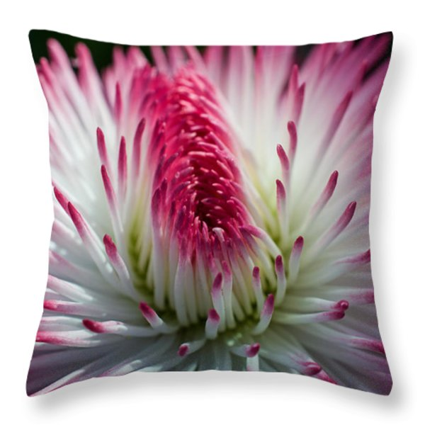 Dark Pink And White Spiky Petals Throw Pillow by Jordan Blackstone