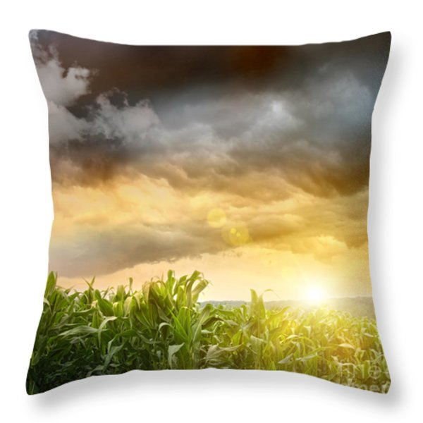 Dark Skies Looming Over Corn Fields Throw Pillow by Sandra Cunningham