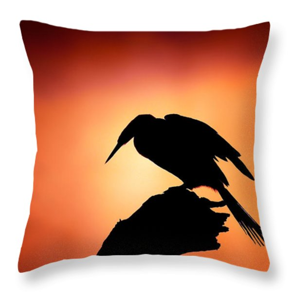 Darter Silhouette With Misty Sunrise Throw Pillow by Johan Swanepoel