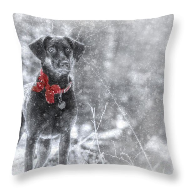 Dashing Through the Snow Throw Pillow by Lori Deiter