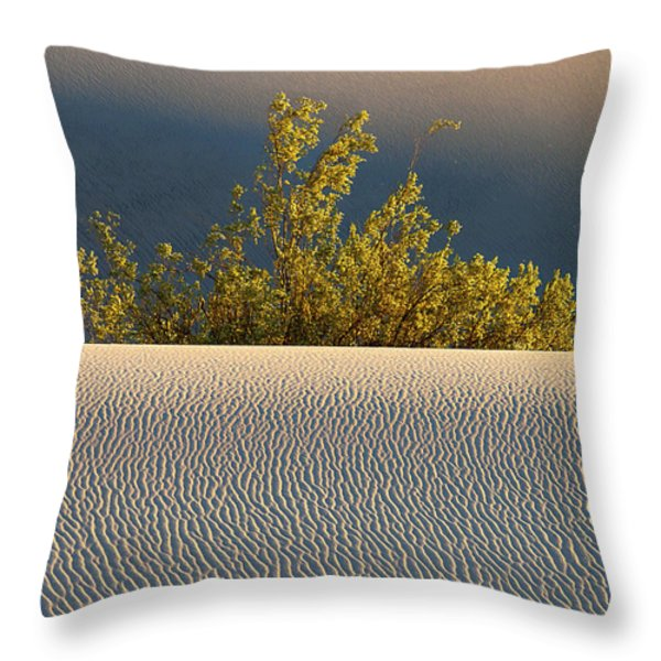 Dawn Mesquite  Throw Pillow by Joe Schofield