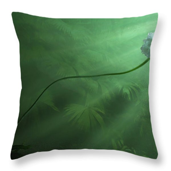 Dawning Throw Pillow by John Edwards