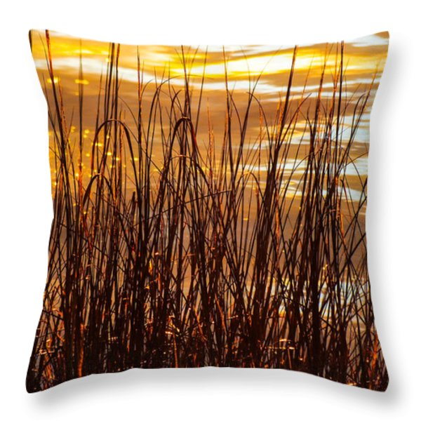 DAWN'S EARLY LIGHT Throw Pillow by KAREN WILES
