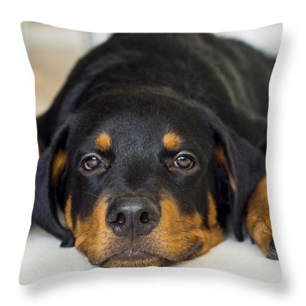 Day Dreaming Throw Pillow by Aged Pixel