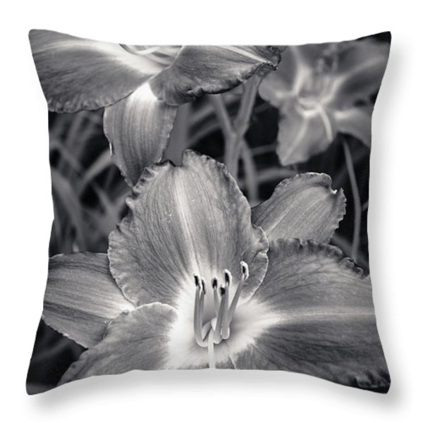 Day Lilies in Black and White Throw Pillow by Adam Romanowicz