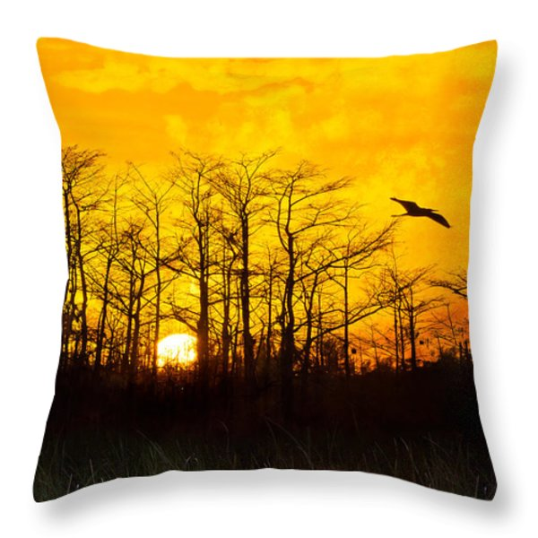 Day's End Throw Pillow by Debra and Dave Vanderlaan