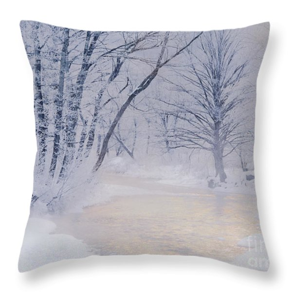 December Riverscape Throw Pillow by Alan L Graham