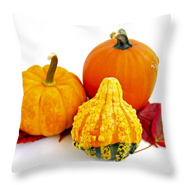 Decorative Pumpkins Throw Pillow by Elena Elisseeva